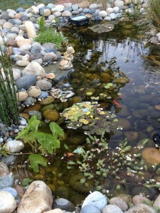 Here fishy, fishy. . .