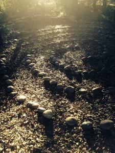 Labyrinth in sunshine