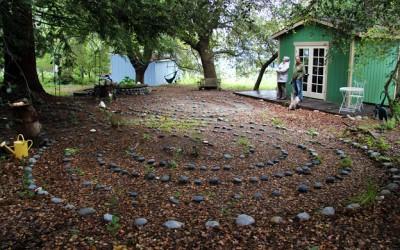 Drought tolerant landscaping?!